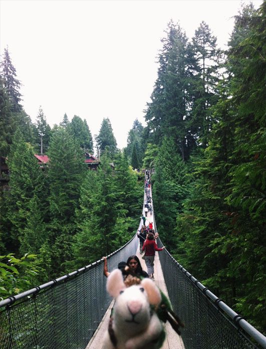 Capilano Bridge with my traveling mouse Tom